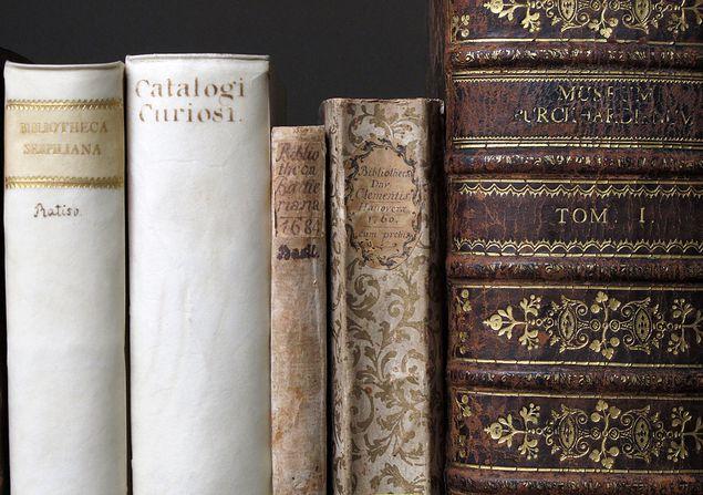 csm_Bild_2_Autorenbibliotheken_Teilprojekt_Wolfenbuettel_1963e9ffbd